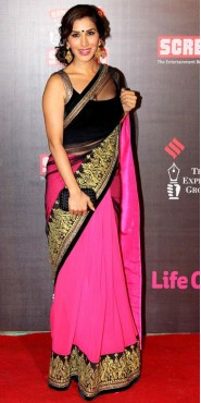 Sophie Chaudhary In Half Black Net And Pink Georgette Saree