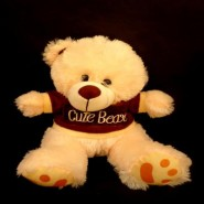 Cute bear big